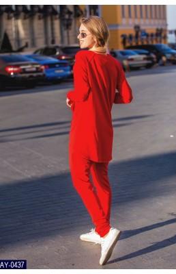 Прогулочный костюм AY-0437