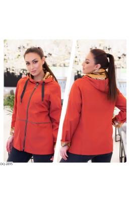 Куртка DQ-2895